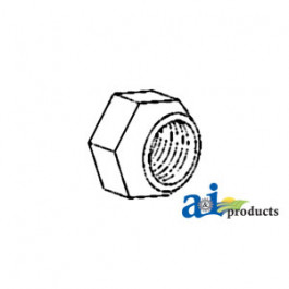 Nut, Disc to Axle Flange