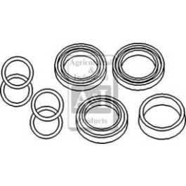 Cylinder Repair Kit (7)