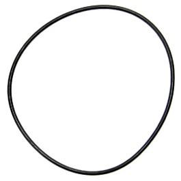 IPTO Bearing Cage O-Ring - 252556