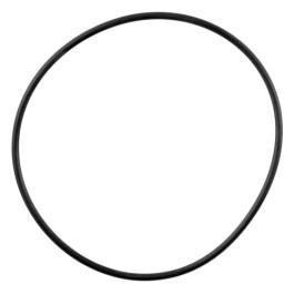 IPTO Bearing Cage O-Ring - 359156