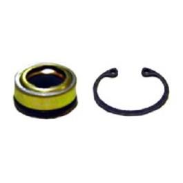 Sanden Compressor Seal Kit