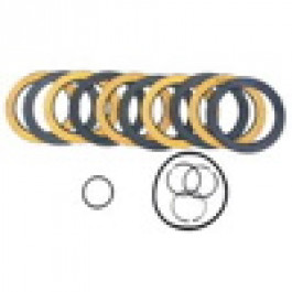 IPTO Clutch Kit - F830480