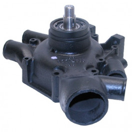 Water Pump, w/o Hub - Reman - M3641875