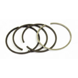 Piston Ring Set - 50110096