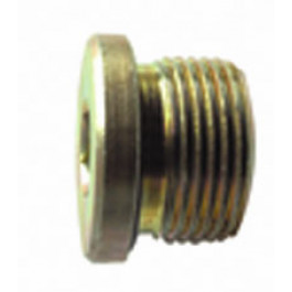 Plug (12 x 1.5)
