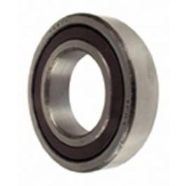 Bearing (6005.2RS)
