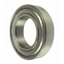 Bearing (6006Z)