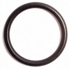 O Ring (22 x 27)