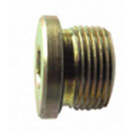 Plug (16 x 1.5)