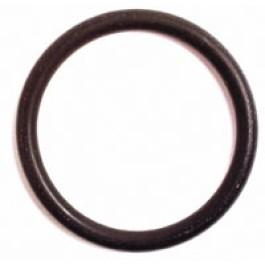 O Ring (25 x 21)