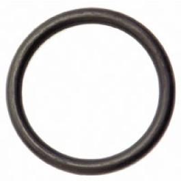 O Ring (55 x 45)