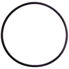 O Ring (55 x 2)