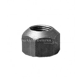 Front Lug Nut