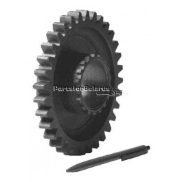 1st and Reverse Driven Gear with Bushing