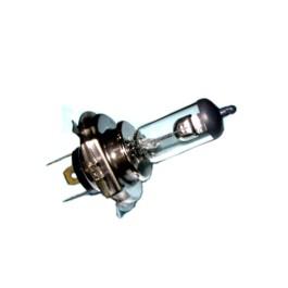 Bulb (12V35/35W) - T4620-69241
